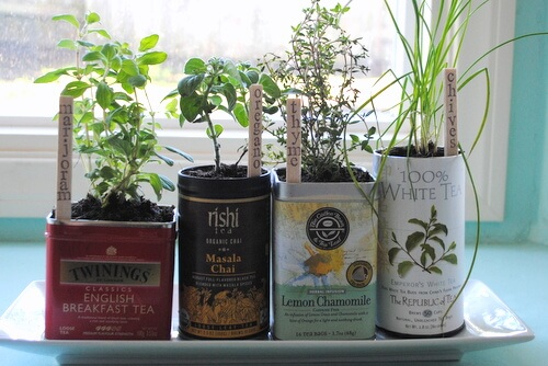 Herb garden tea tins