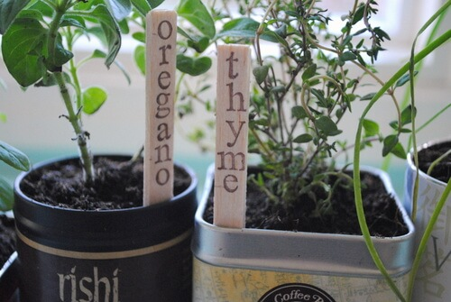 Stamped garden markers for growing herbs