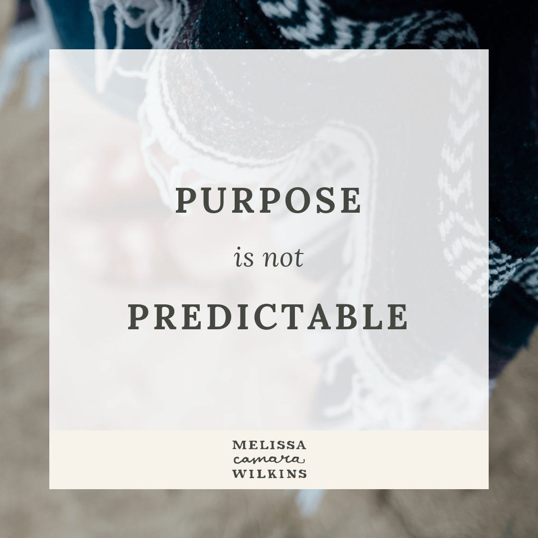 Purpose over predictability.